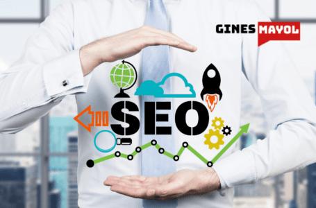 Google clasifica las páginas web, no los sitios web